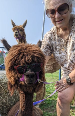 Alpacas with sunglasses? You can see it all at the annual Back-to-School Expo.