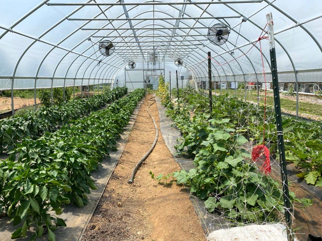 A hoop house at the Project Grows farm near Verona in Augusta County is shown in this file photo.