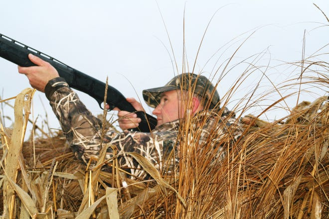 Waterfowl season will soon be here, make sure your firearm and ammunition are correct.