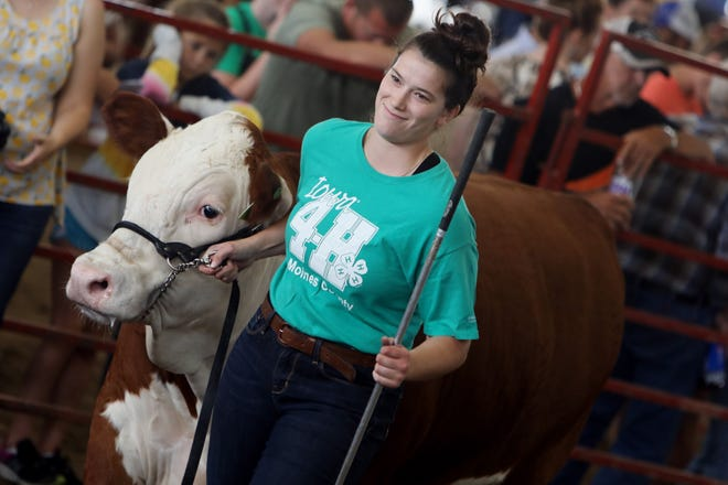 Hallie Mohr smiles Friday after showing Lindell, a crossbred steer, in the arena during the Des Moines County Fair 4H/FFA Beef and Dairy Cattle Show at the fairgrounds in West Burlington. Saturday, which is Kids Day at the fair, kicks off the 4H/FFA Sheep Show.
