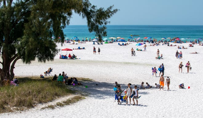 Venice Pier Group, owners of restaurants and bars Sharky's on the Pier, Fins at Sharky's and Snook Haven, announced it will manage concessions at Siesta Beach, pictured here.