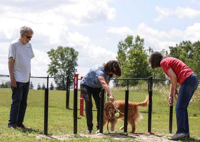 John and Marianne Webster of Northville watch as their dog Maisie trains with dog trainer Elly Price at the Marv Gans Community dog park in Northville Township on Friday, July 30, 2021. The Northville Township dog park is now home to a dog agility course thanks to Eagle Scout Jonathan Barringer at Marv Gans Community Park.