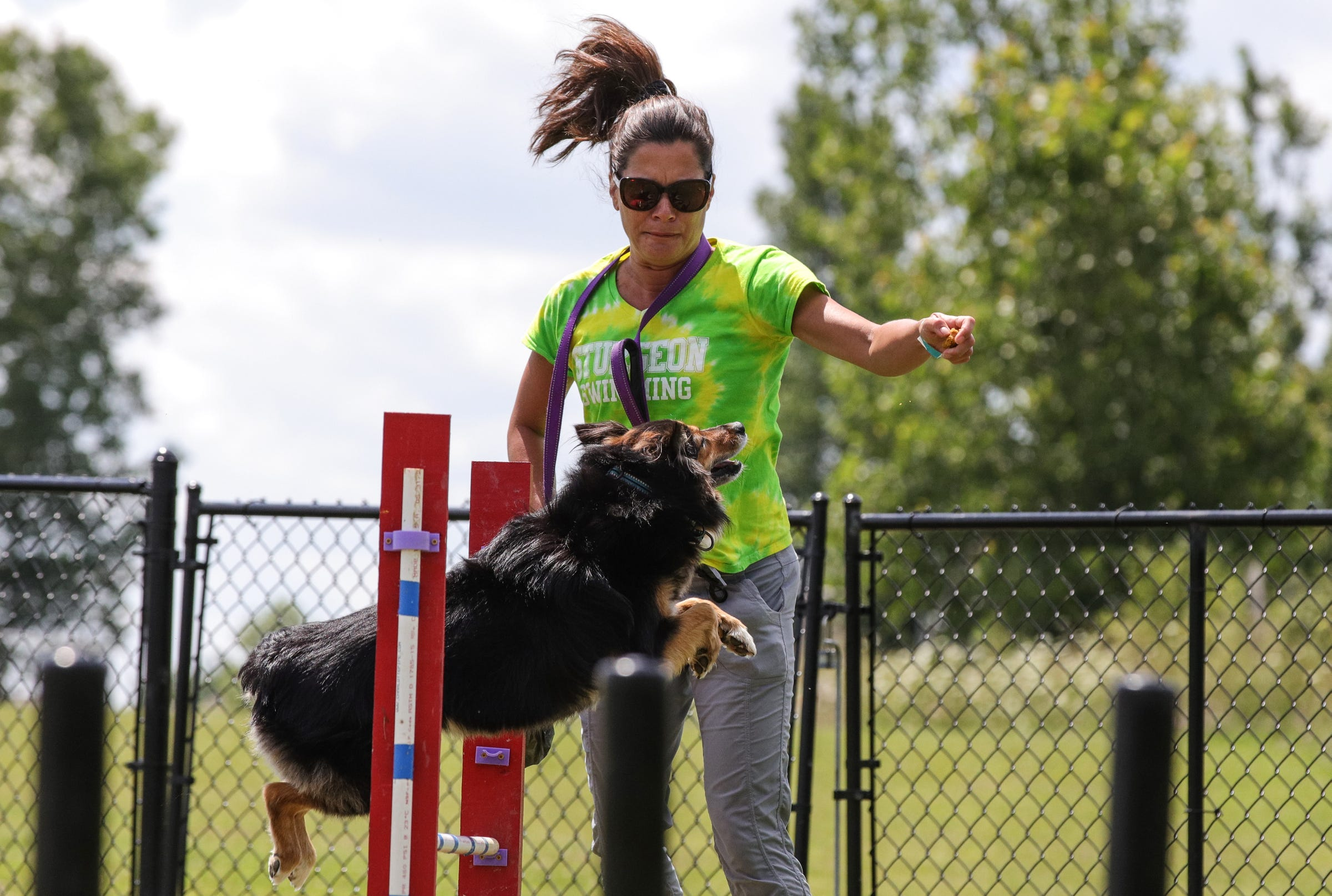 Eagle Scout prospect opens agility course in Northville for dogs