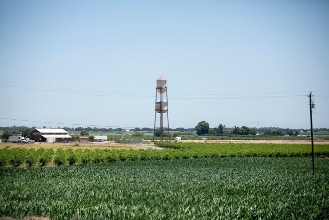 The historic Discover the Delta water tower stands in a field along State Highway 12 near the eastern shore of the Sacramento River in Sacramento County on June 15, 2021.