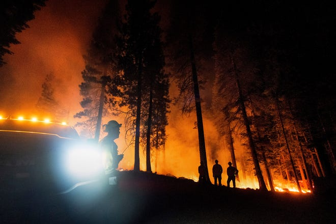 Firefighter Chris Gerking, a Kings County battalion chief, monitors a firing operation, where crews set ground fire to stop a wildfire from spreading, while battling the Dixie Fire in Lassen National Forest, Calif., on Monday, July 26, 2021.