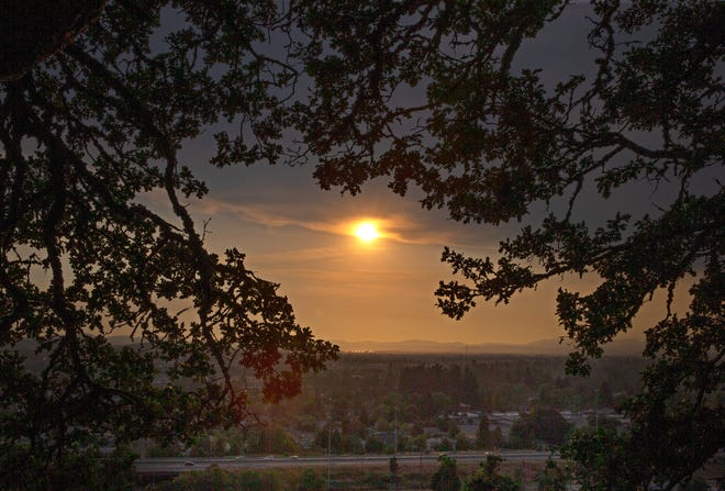 The sun sets over Eugene as seen through a canopy of trees on the west side of Skinner Butte.