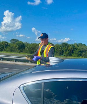 A struck turtle was sent into the windshield of a driver in Florida's Turnpike in northern St. Lucie County on Friday, July 30, 2021, according to the St. Lucie County Fire District. Both driver and turtle were unharmed.