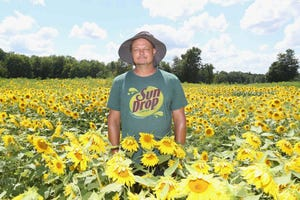 Reese Rose stands Monday in a field at his Medina Sunflower Farm in Sharon Center.