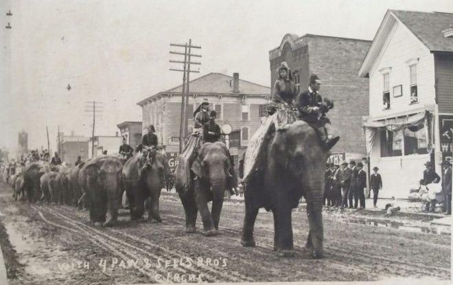 Forepaugh-Sells elephants parade the streets of Cheboygan.