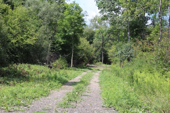 A view of the WAG Trail in southern Allegany County.