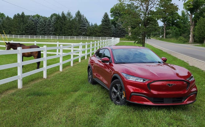 Detroit News auto critic Henry Payne took the 2021 Ford Mustang Mach-E - RWD, 211-mile range battery - up north for a week. Local horses approved of Ford's first EV.
