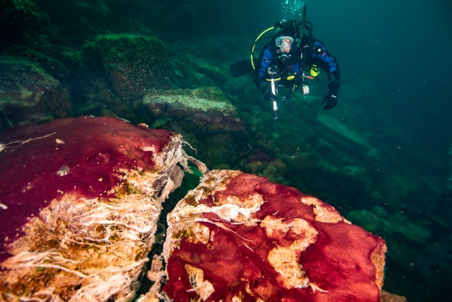 A scuba diver observes microbes covering rocks in Lake Huron's Middle Island Sinkhole. Feel like days are just getting longer? They are, and it's a good thing because we wouldn't have much to breathe if they weren't, according to a new explanation for how Earth's oxygen rich atmosphere may have developed because of Earth's rotation slowing.