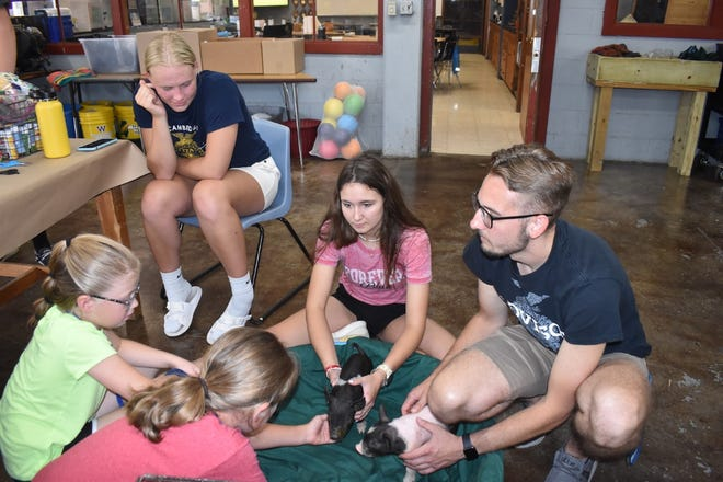 Fourth and fifth graders were invited to Cambridge FFA's mAGic Camp on Wednesday, July 21. In the ag shop, a group used paper plates to learn how to make ear notches in pigs. The children checked out two of Rodney Beam's piglets. Clockwise from center in front are Ruby Sue Beam, Claire Pace, Paige Leander (in chair), Madi Casteel and advisor Trent Taber.