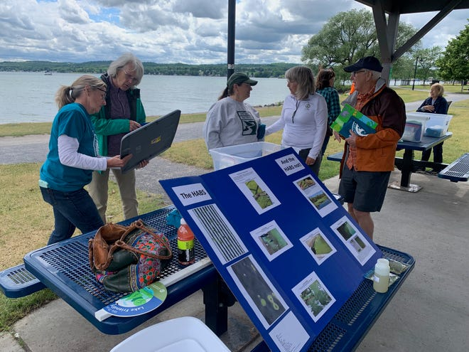 Seen at a meet and greet for Canandaigua Lake Watershed Association leaders and volunteers at Kershaw Park in Canandaigua on June 22, from left: Lynn Klotz (incoming CLWA president); Betty Brayer; Cynthia Mellen Smith; Sally Napolitano (a CLWA board member); and Bill Yust.