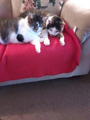 Sissy and Sammy.
