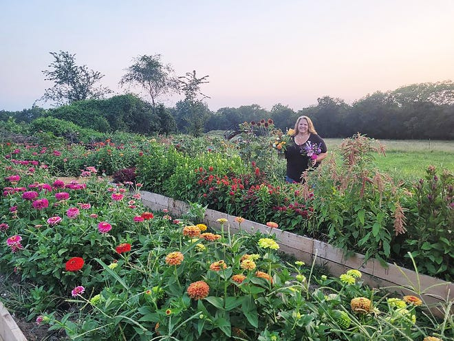 Jeanette Klamm has created a cut flower garden and maze at her family's farm.