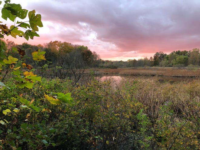 Evening sets during fall 2020 at Lydick Bog Nature Preserve in South Bend. Plein-air painters from the Northern Indiana Pastel Society will paint on site while local musicians perform Aug. 14, 2021.