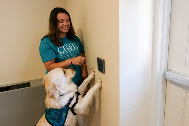 In this June 17, 2019 photo Sara Green helps MEADOW learn to press and automatic door opener, one of the many way a service animal can assist someone with a disability.