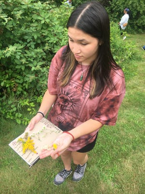 Plymouth South High School student Lana Yee shows the plant material she will use in the Herring Pond Wampanoag Tribe art project.