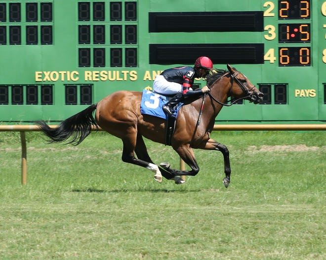 Yes It's Ginger went 2-for-2 last summer at Ellis Park, including this Aug. 16 allowance victory under Brian Hernandez Jr.