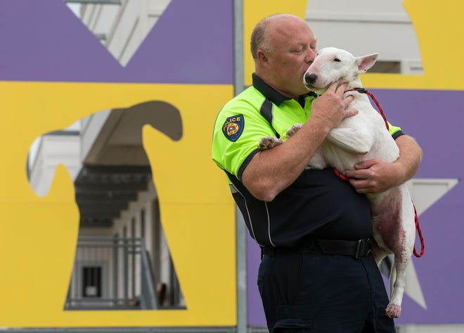 Round Rock police officer John Schultz adopted Champ after the dog had been dragged by his owner behind a pickup,