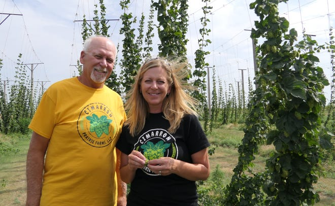 Steve Morisse and Brandi Lahey of Cimarron Prairie Farms stand in their hop yard in Moscow, Kansas.
