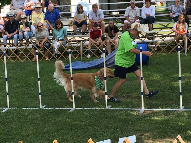 Deb Mattis, a leader with the Paws R Us 4-H club, takes a dog through the course Thursday afternoon. Monroe News photo by Suzanne Nolan Wisler