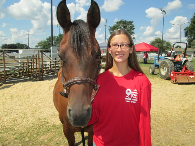 Grace Brown, 15, of Ottawa Lake,  the reserve overall showman of 4-H horses at the fair this week, showed her bay Arabian named Bella Swan in the arena.