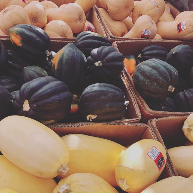 Winter squash varieties include acorn, butternut and spaghetti melons.