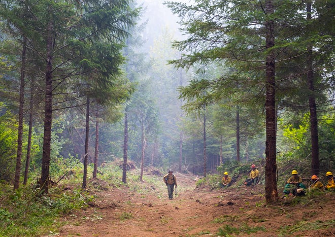 Leo Rasch, crew boss with Franco Reforestation, walks down a fire line as his crew takes a much-needed break from securing the perimeter of the Kwis Fire, part of the Middle Fork Complex, east of Oakridge.