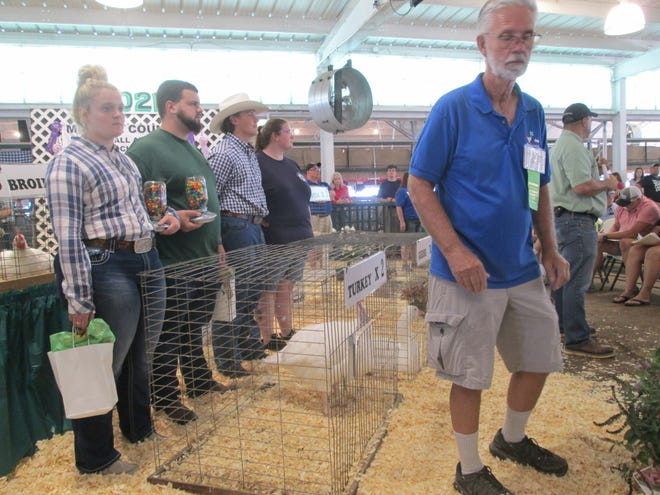 Four surviving siblings of Madison Lee, 18, of Ottawa Lake watch as auctioneers Jerry Vandermeer (right) and Brad Neuhart gather bids on turkeys and broiler chickens raised by Madison during the 4-H Small Animal Sale on Saturday. Shown are (from left) Macie, Madison's twin sister; Tyler Lee, 26; Chase Lee, 13, and Lily Oberlitner, 27. Madison, a 4-H club member, was killed in an auto accident Aug. 1.