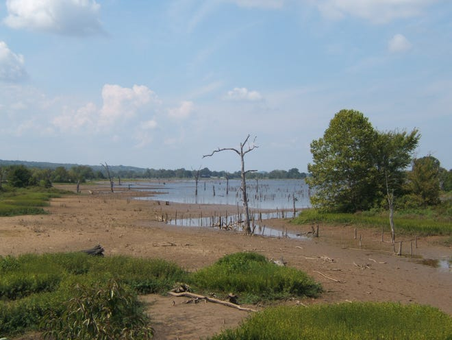 The water level of Lake Jack Nolen in Greenwood will be lowered on Sept. 7.