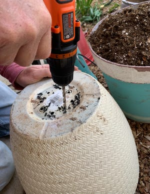 Adequate drainage in a growing container is a much bigger deal than many new gardeners realize.