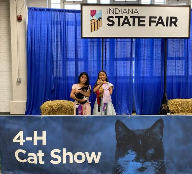 Both MiaRose and Meilynn Hess participated in State Fair Cat Show. Both sisters brought home several ribbons with MiaRose, right, earning Reserve Champion Senior Long Hair Adult Cat with her fancy feline, Magnolia Jane.