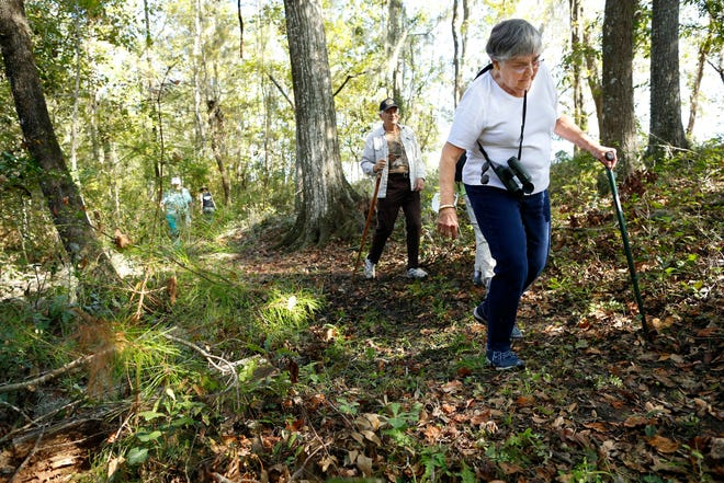 Marianne VanAlsty walks with her friends along a trail while attending the grand opening of the Santa Fe River Preserve take a paddling tour of the river north of Gainesville in Worthington Springs Saturday Nov. 18, 2017. The more than 900 acres was bought in sections by the Alachua County Conservation Trust.   [Brad McClenny/The Gainesville Sun]