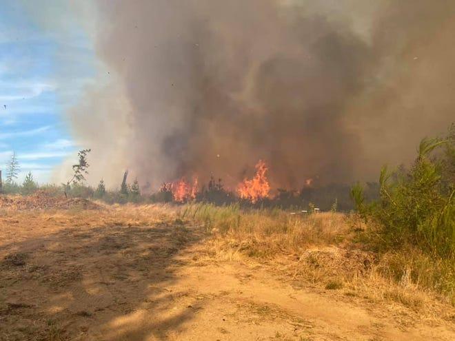 A wlidfire burns on Monday near Horseshoe Lake in South Kitsap.