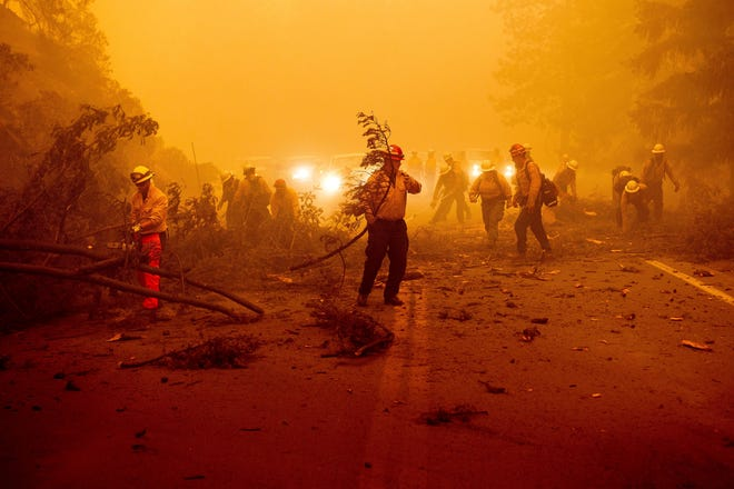 Firefighters battling the Dixie Fire clear Highway 89 after a burned tree fell across the roadway in Plumas County, Calif., on Aug. 6. (AP Photo/Noah Berger)