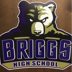Briggs Bruins