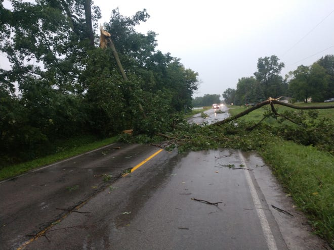 This tree fell across Plank Rd. one mile east of Milan during today's storm.