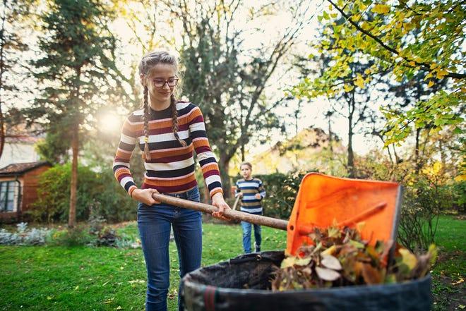 Kids raking autumn leaves in back yard. Teenage girl is composting the autumn leaves.Nikon D850