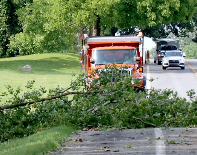 A fallen tree across power lines along M-66 north of Hackman Road is examined Wednesday by MDOT and public safety officials.