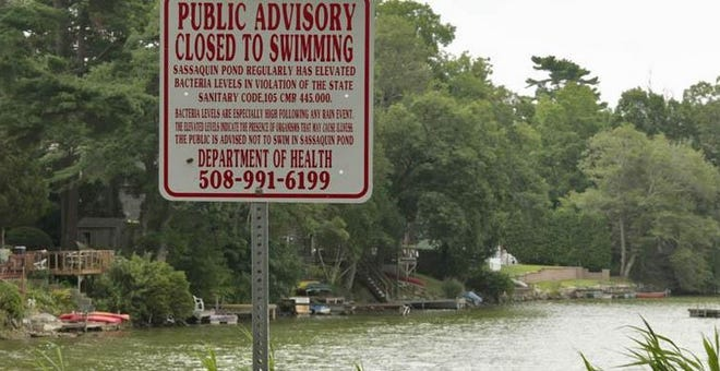 File photo: Sassaquin Pond in New Bedford's North End was unusually still. A toxic algae bloom prompted the pond's closing in August 2010.