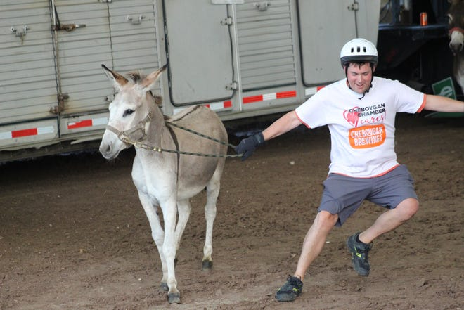 Bryan Groff of the Cheboygan Area Chamber of Commerce donkey racing team had some issues with his donkey not wanting to cooperate with going around the track, but he was still able to finish the race.