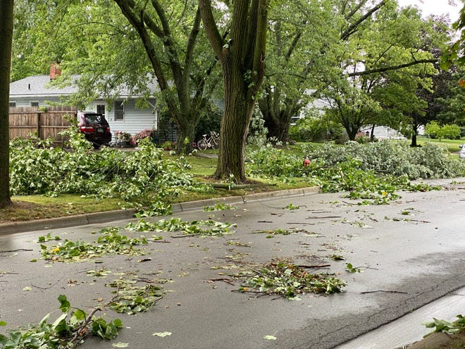 Several downed branches are seen Wednesday on Wenonah Street in Tecumseh after severe thunderstorms crossed Lenawee County.