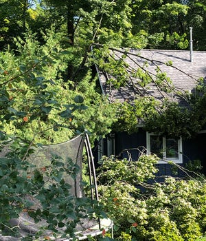 Downed tree limbs, such as this on a home in Alanson, along with power lines were a common occurrence following widespread storms earlier this week in Northern Michigan.