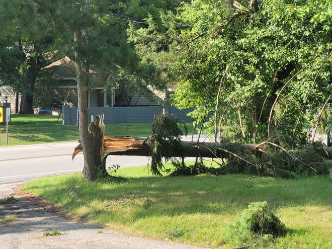 A downed tree in northeastern Elkhart. Severe thunderstorms moved through Michiana on Wednesday, leaving thousands without power.