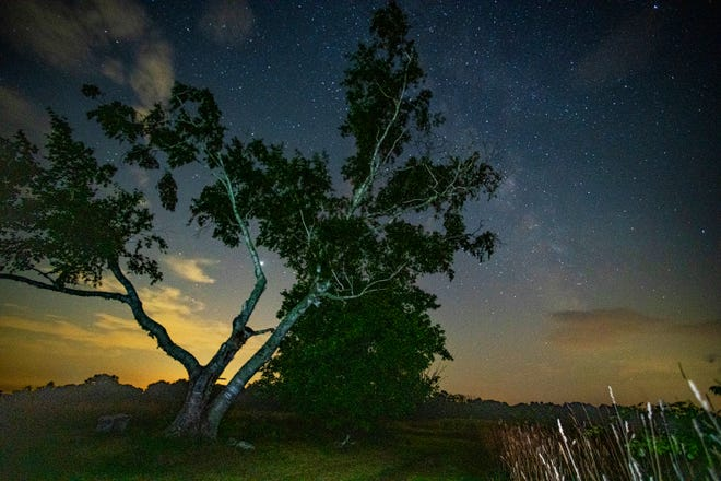 The Milky Way galaxy is visible from Mandell Hill to the right of a leaning tree Wednesday evening. The East Quabbin Land Trust Property has a large platform available for viewing the night sky. Occasionally a meteor was seen zipping across the sky.