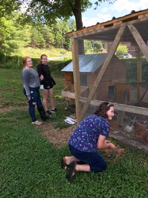 A group of Madison Middle School PAGE students met this June to learn about natural history and permaculture.  On Aug. 11., Superintendent Will Hoffman instituted a mask requirement for students and staff.