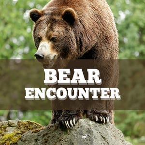 Two men were hiking with a dog off-trail in the Bear Creek area when they encountered a grizzly bear sow with cubs at close range.