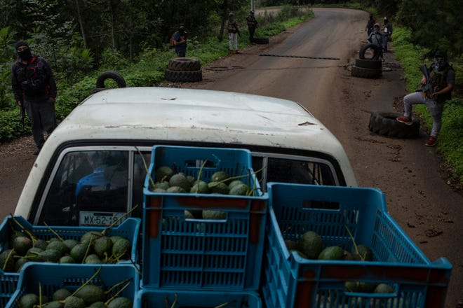 """A truck loaded with avocados passes the checkpoint known as La Gringa, which is guarded by members of """"Pueblos Unidos."""" Photo by Cristopher Rogel Blanquet, Special to The Courier Journal"""